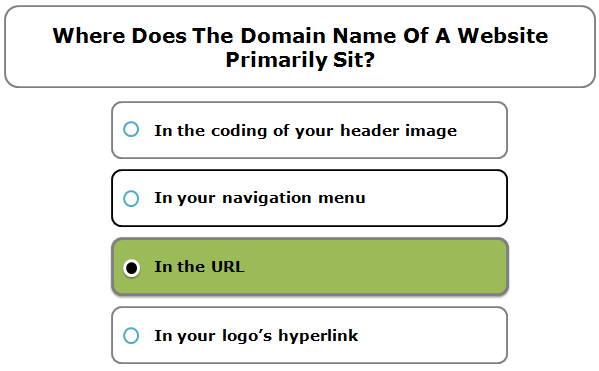 Where Does The Domain Name Of A Website Primarily Sit?