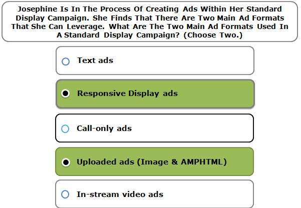 Josephine Is In The Process Of Creating Ads Within Her Standard Display Campaign. She Finds That There Are Two Main Ad Formats That She Can Leverage. What Are The Two Main Ad Formats Used In A Standard Display Campaign? (Choose Two.)