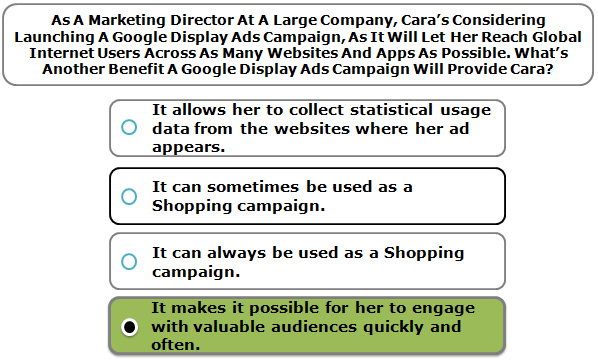 As A Marketing Director At A Large Company, Cara's Considering Launching A Google Display Ads Campaign, As It Will Let Her Reach Global Internet Users Across As Many Websites And Apps As Possible. What's Another Benefit A Google Display Ads Campaign Will Provide Cara?