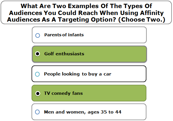 What Are Two Examples Of The Types Of Audiences You Could Reach When Using Affinity Audiences As A Targeting Option? (Choose Two.)