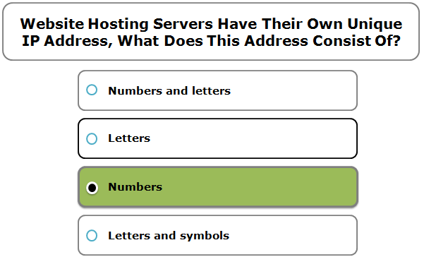 Website Hosting Servers Have Their Own Unique IP Address, What Does This Address Consist Of?
