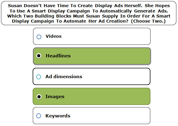 Susan Doesn't Have Time To Create Display Ads Herself. She Hopes To Use A Smart Display Campaign To Automatically Generate Ads. Which Two Building Blocks Must Susan Supply In Order For A Smart Display Campaign To Automate Her Ad Creation? (Choose Two.)