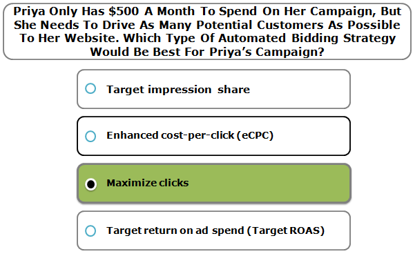 Priya Only Has $500 A Month To Spend On Her Campaign, But She Needs To Drive As Many Potential Customers As Possible To Her Website. Which Type Of Automated Bidding Strategy Would Be Best For Priya's Campaign?
