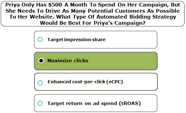 Priya Only Has $500 A Month To Spend On Her Campaign, But She Needs To Drive As Many Potential Customers As Possible To Her Website. What Type Of Automated Bidding Strategy Would Be Best For Priya's Campaign?