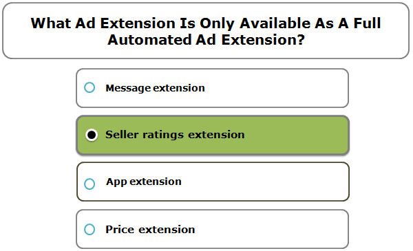 What Ad Extension Is Only Available As A Full Automated Ad Extension?