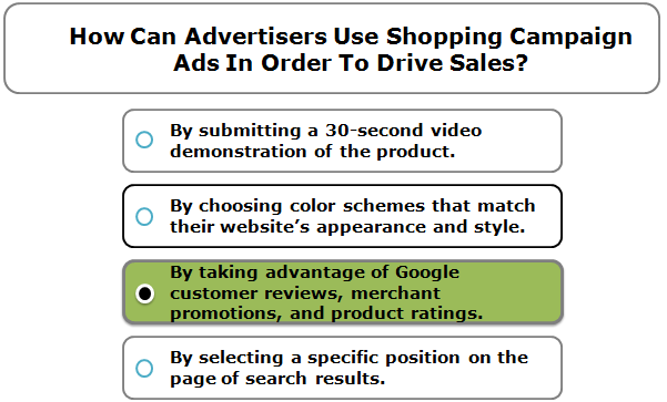How Can Advertisers Use Shopping Campaign Ads In Order To Drive Sales?