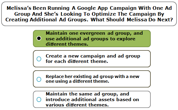 Melissa's Been Running A Google App Campaign With One Ad Group And She's Looking To Optimize The Campaign By Creating Additional Ad Groups. What Should Melissa Do Next?