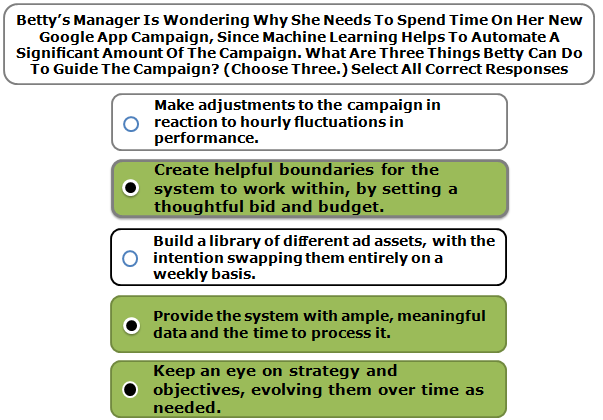 Betty's manager is wondering why she needs to spend time on her new Google App campaign, since machine learning helps to automate a significant amount of the campaign. What are three things Betty can do to guide the campaign? (Choose three.)