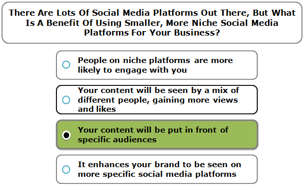 There are lots of social media platforms out there, but what is a benefit of using smaller, more niche social media platforms for your business?
