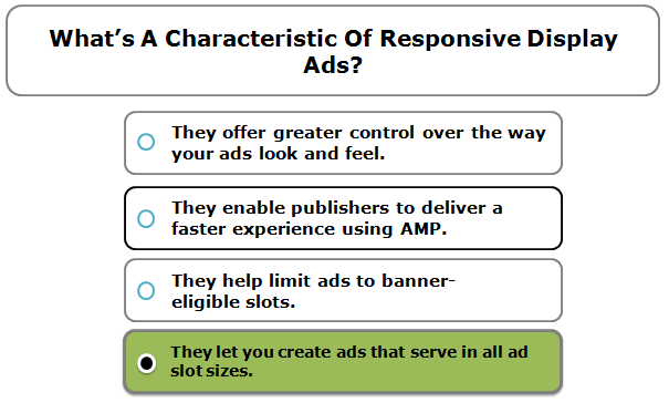 What's a characteristic of Responsive Display Ads?