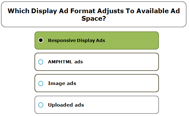Which Display Ad format adjusts to available ad space?