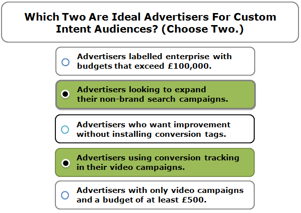 Which two are ideal advertisers for Custom Intent audiences? (Choose two.) Select All Correct Responses