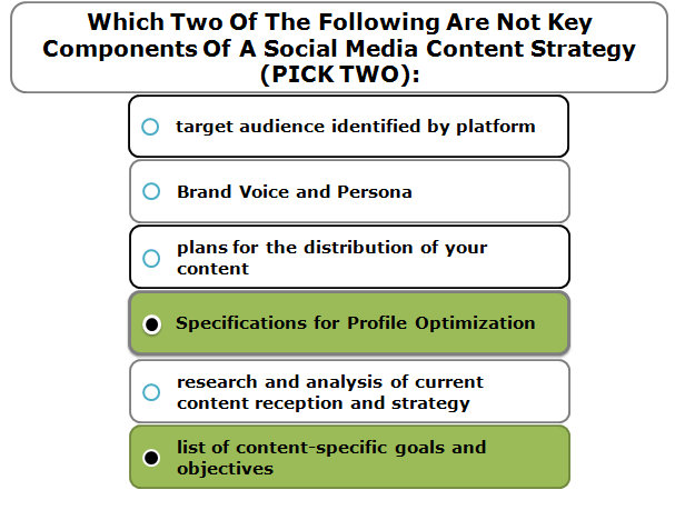 Which two of the following are not key components of a Social Media Content Strategy (PICK TWO):