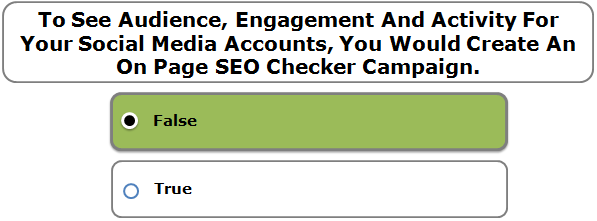 To See Audience, Engagement And Activity For Your Social Media Accounts, You Would Create An On Page SEO Checker Campaign.