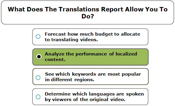 What Does The Translations Report Allow You To Do?