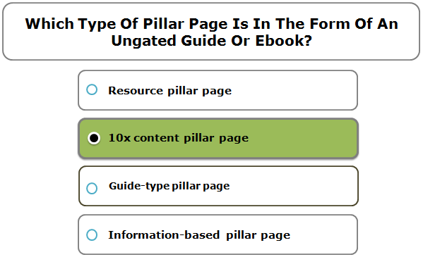 Which Type Of Pillar Page Is In The Form Of An Ungated Guide Or Ebook?