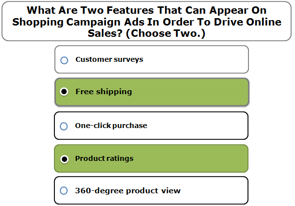 What Are Two Features That Can Appear On Shopping Campaign Ads In Order To Drive Online Sales? (Choose Two.)