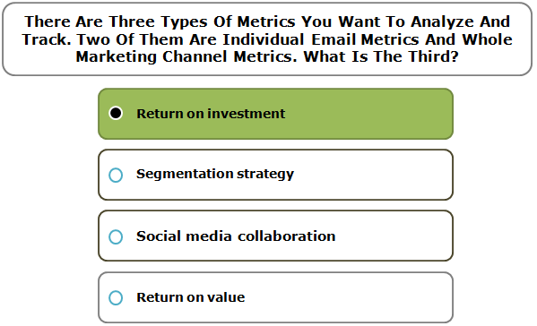 There Are Three Types Of Metrics You Want To Analyze And Track. Two Of Them Are Individual Email Metrics And Whole Marketing Channel Metrics. What Is The Third?