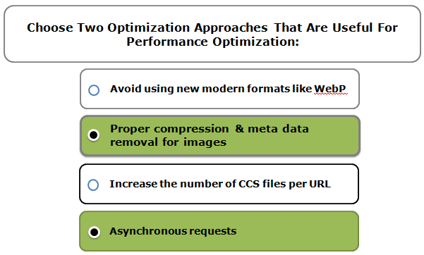 Choose Two Optimization Approaches That Are Useful For Performance Optimization:
