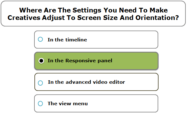 Where Are The Settings You Need To Make Creatives Adjust To Screen Size And Orientation?