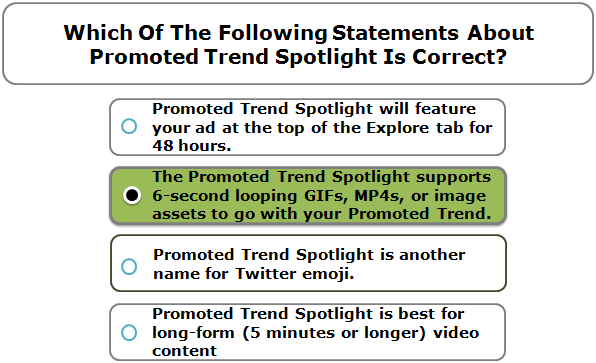 Which Of The Following Statements About Promoted Trend Spotlight Is Correct?