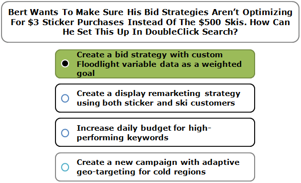 Bert Wants To Make Sure His Bid Strategies Aren't Optimizing For $3 Sticker Purchases Instead Of The $500 Skis. How Can He Set This Up In DoubleClick Search?