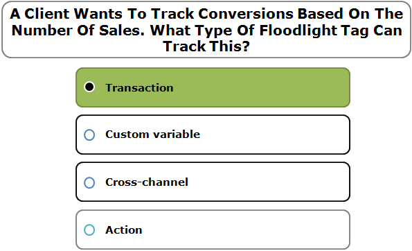 A Client Wants To Track Conversions Based On The Number Of Sales. What Type Of Floodlight Tag Can Track This?