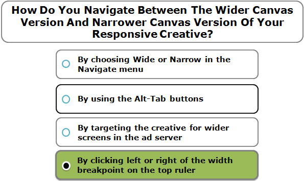 How Do You Navigate Between The Wider Canvas Version And Narrower Canvas Version Of Your Responsive Creative?