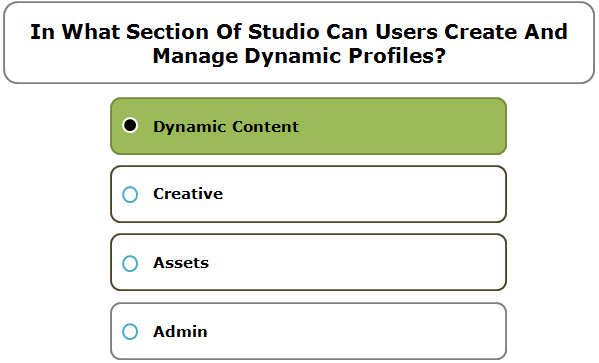 In What Section Of Studio Can Users Create And Manage Dynamic Profiles?