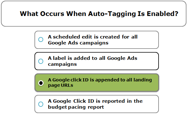 What Occurs When Auto-Tagging Is Enabled?