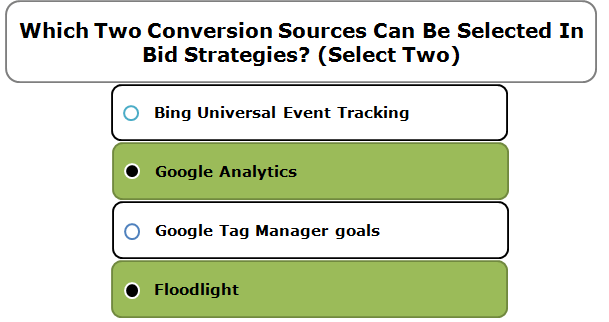 Which Two Conversion Sources Can Be Selected In Bid Strategies? (Select Two)