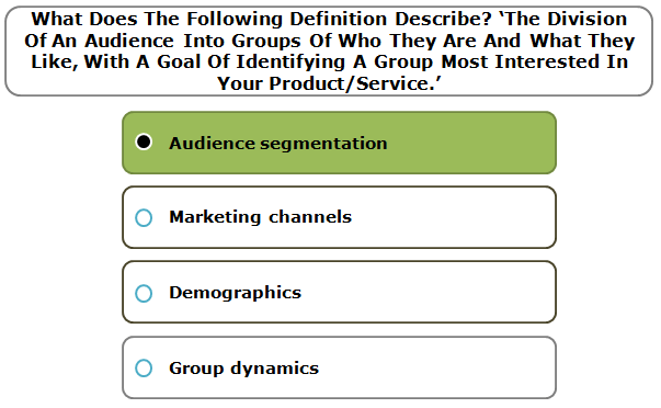 What does the following definition describe? 'the division of an audience into groups of who they are and what they like, with a goal of identifying a group most interested in your product/service.'