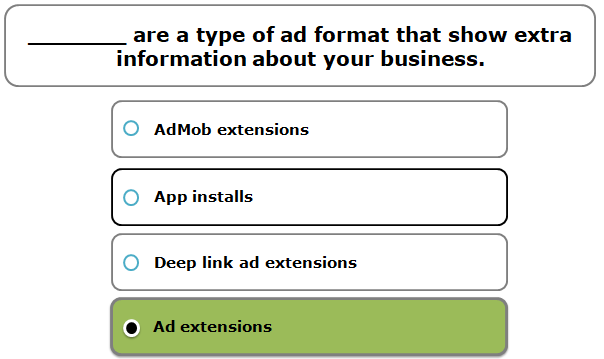 _______ are a type of ad format that show extra information about your business.