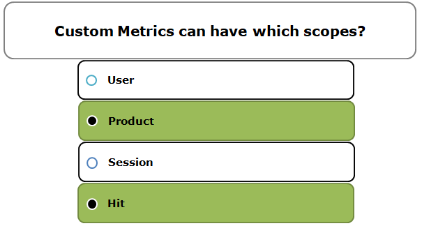 Custom Metrics can have which scopes?