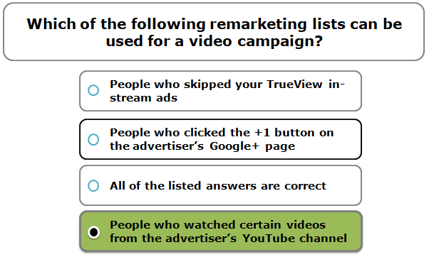 Which of the following remarketing lists can be used for a video campaign?